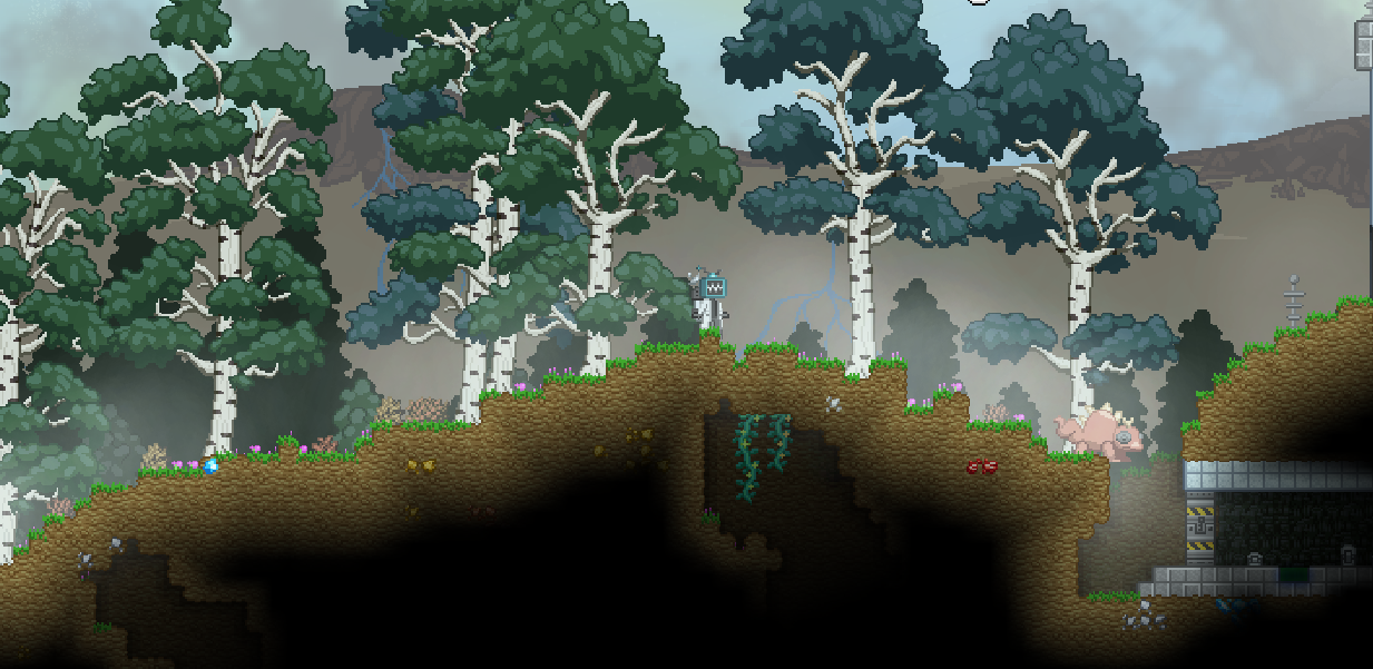 Forest Biome.png