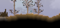 Savannah Biome2.png