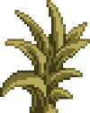 Leafy Plant (4).png