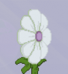 Leaves - whitepetals example.png