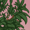 Leaves - junglepalm example.png